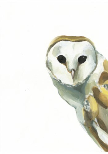 Mike the Owl